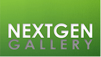 nextgen gallery Wordpress